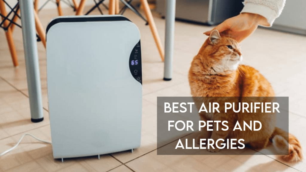 best air purifier for pets and allergies